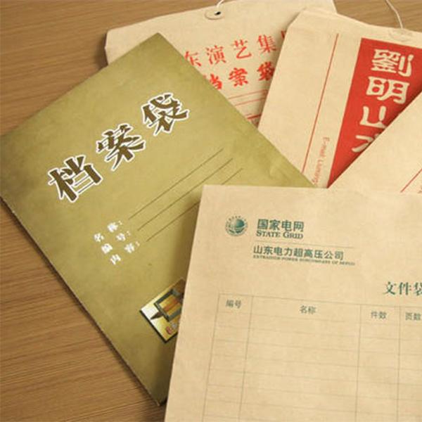 档案袋案例